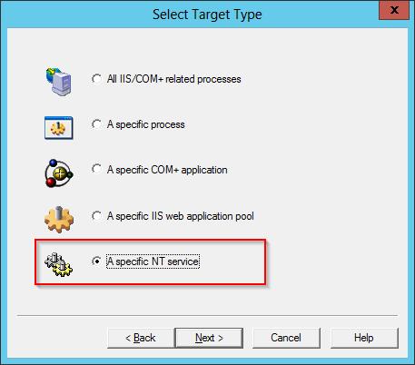 DebugDiag: Select Windows Service Option