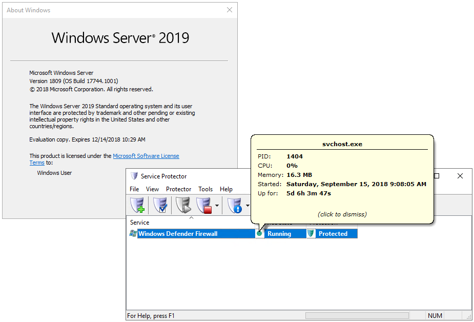 Service Protector on Windows Server 2019
